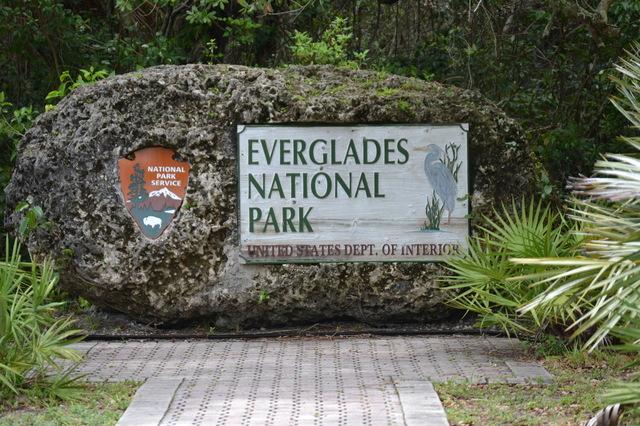 1 les everglades