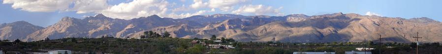 1320px catalina panorama