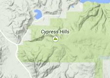 15 cypres hills