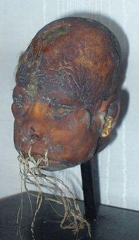 200px shrunken head lightner museum
