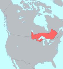 220px ojibwe language map