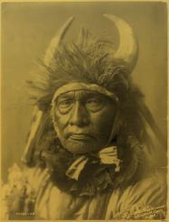 250px bull chief