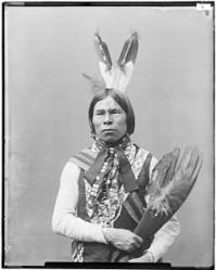 255px kickapoo babe shkit chief and delegate from oklahoma nara 523854