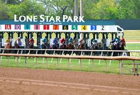 330px lone star park horse race