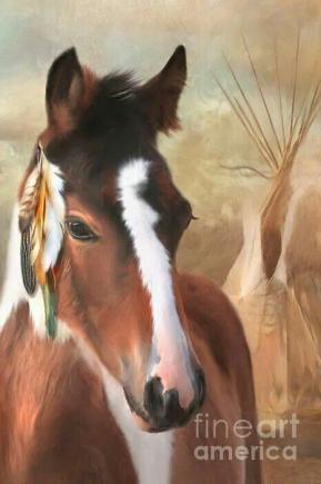 4c17c86fbb2d0df7ebd3a6cf60256547 native american art american indians