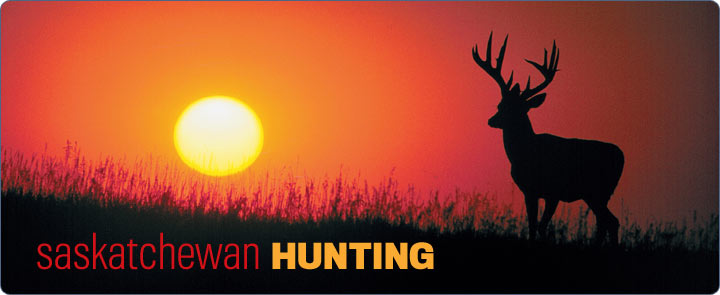 Banner saskhunting