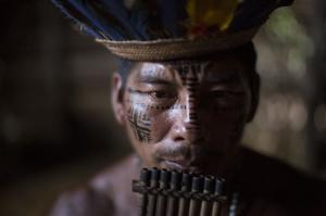Brazil wcup indigenou simc