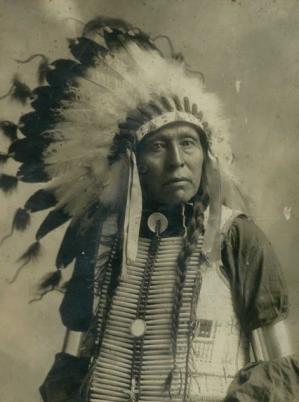 Chief flying hawk3