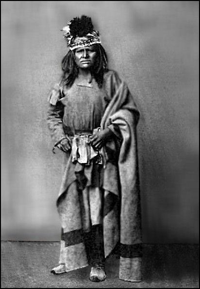 Godigojo tonto apache