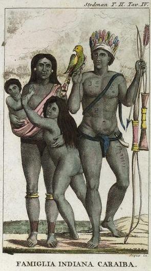 Indien caraibes