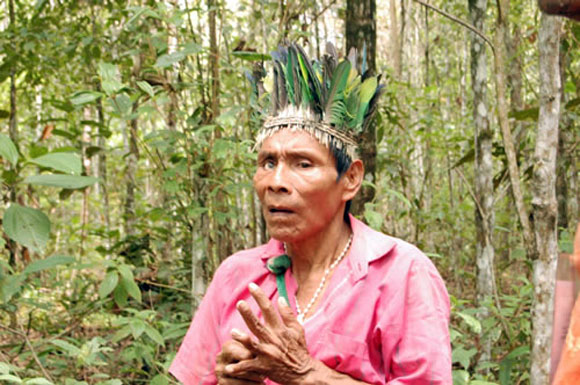 Indigena interior bari