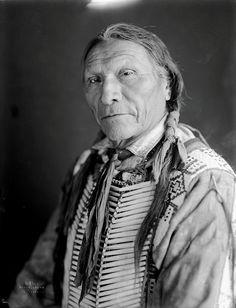 John white hawk
