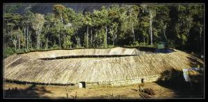 Maison villageyanomamiamazonie le territoire des amc3a9rindiens yanomami est