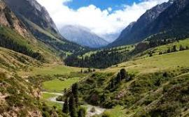 Mutton mountains