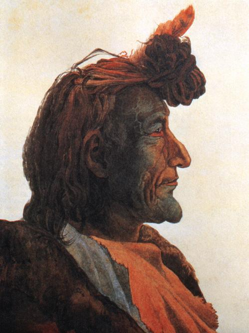 Piegan blackfeet man pioch kiaiu by karl bodmer