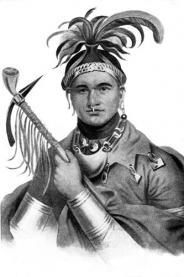 Seneca indien