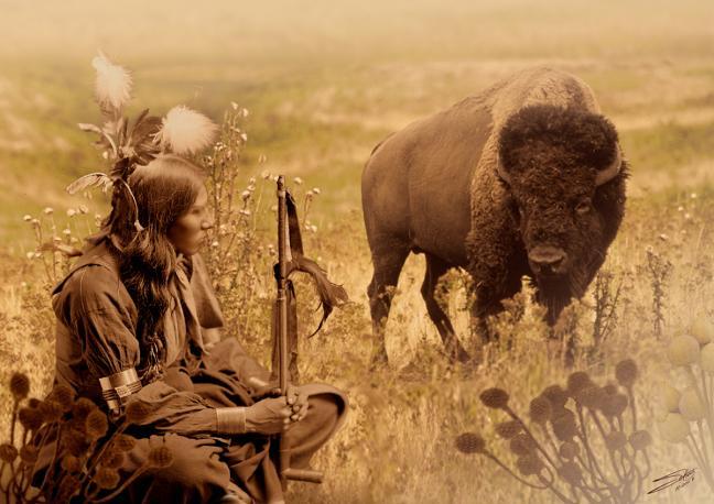 Sioux et bison