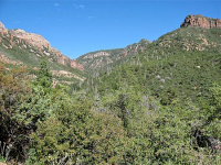 South fork parker canyon sierra ancha arizona