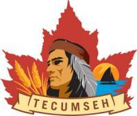 Tecumseh 300 om